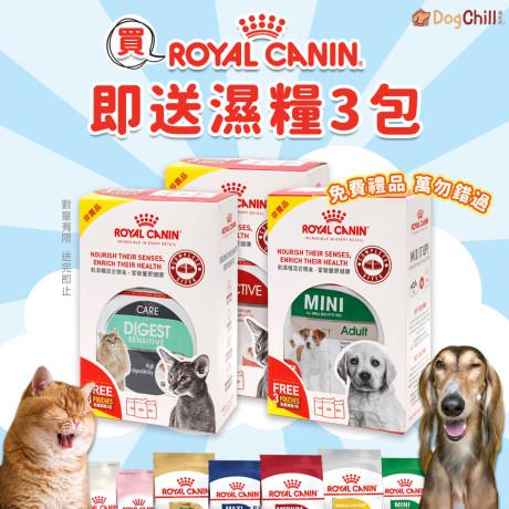 DogChill瘋狂犬-狗糧我至抵-最愛瘋狂寵物用品速遞-狗糧-狗尿墊-狗尿片-狗零食-RoyalCanin-送濕糧3包 Wendy