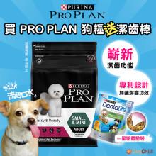 DogChill瘋狂犬-狗糧我至抵-最愛瘋狂寵物用品速遞-狗糧-狗尿墊-狗尿片-狗零食-ProPlan-買狗糧送潔齒棒-免費禮品 Wendy