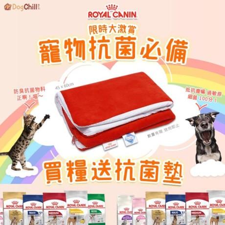 DogChill瘋狂犬-狗糧我至抵-最愛瘋狂寵物用品速遞-狗糧-狗尿墊-狗尿片-狗零食-RoyalCanin-買糧送抗菌墊.