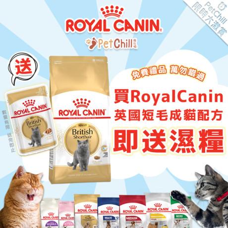 PetChill瘋狂喵-我愛好貓砂-最愛瘋狂寵物用品速遞-貓砂-貓糧-貓零食-貓狗糧至抵保證-RoyalCanin-買短毛貓即送濕糧