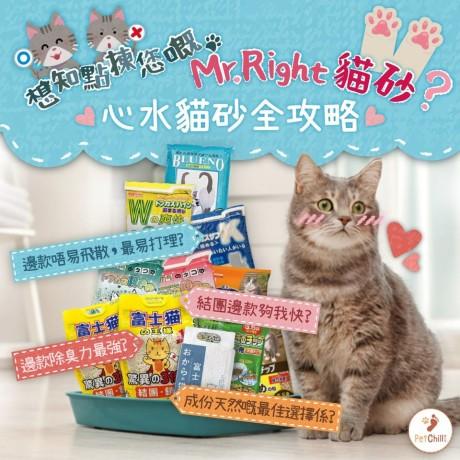 PetChill瘋狂喵-我愛好貓砂-最愛瘋狂寵物用品速遞-貓砂-貓糧-想知 PetChill 有邊款好貓砂推介? Dennis